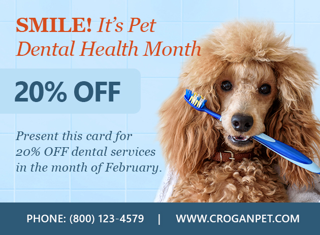 Clients The Ability To Send Their Pet Owners A Dental Reminder Card For Health Month You Pick Design Customize It And We Do All Work
