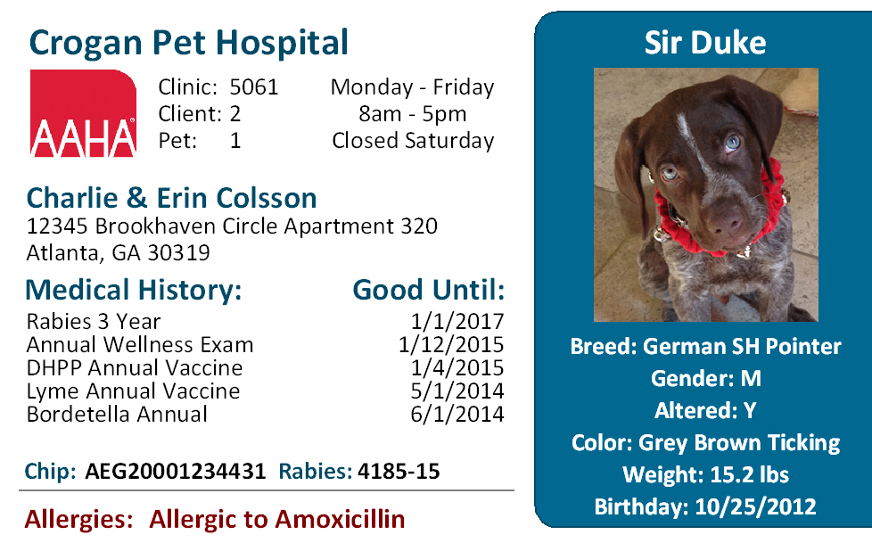 Vetscene Pet ID Card